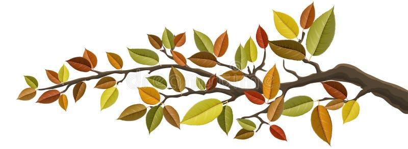 Gałąź z jesień liściem royalty ilustracja