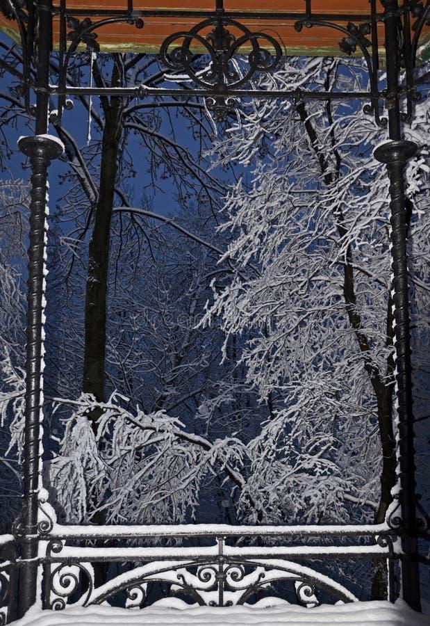 Gałąź zakrywać z świeżym śniegiem zdjęcia royalty free