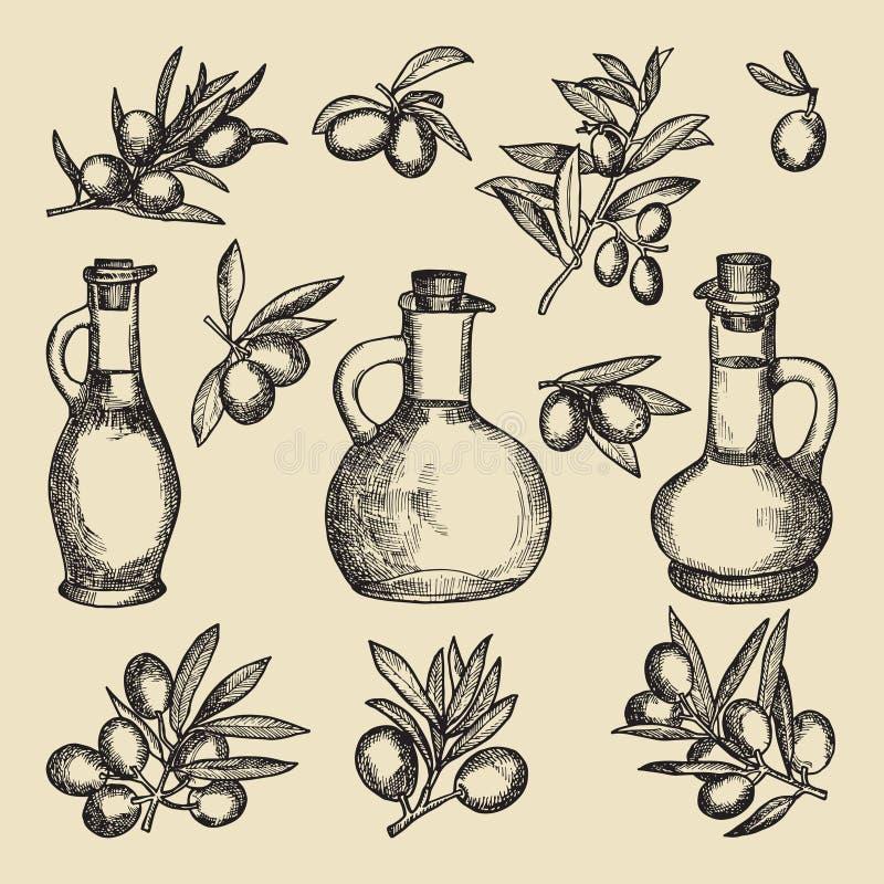 Gałązka oliwna, drzewo, olej i butelka, Ręka rysujący roczników obrazki różni oliwni produkty ilustracja wektor