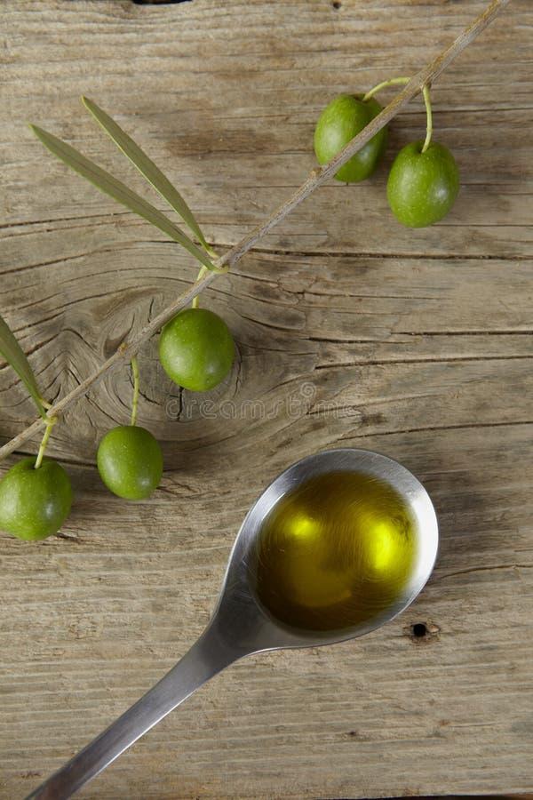 Gałązka oliwna pełno i łyżka olej zdjęcie royalty free