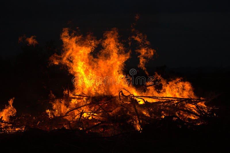Gałązki pali przy parkiem w Thailand katastrofie w krzaka lesie z pożarniczym podesłaniem w suchych drewnach zdjęcia royalty free