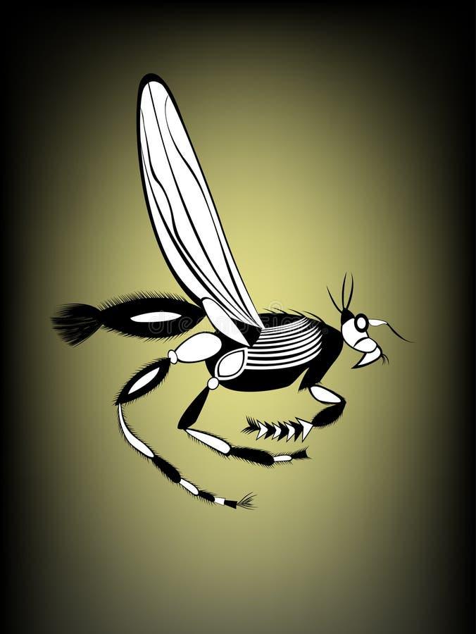 Gałęzatka biegacz, royalty ilustracja
