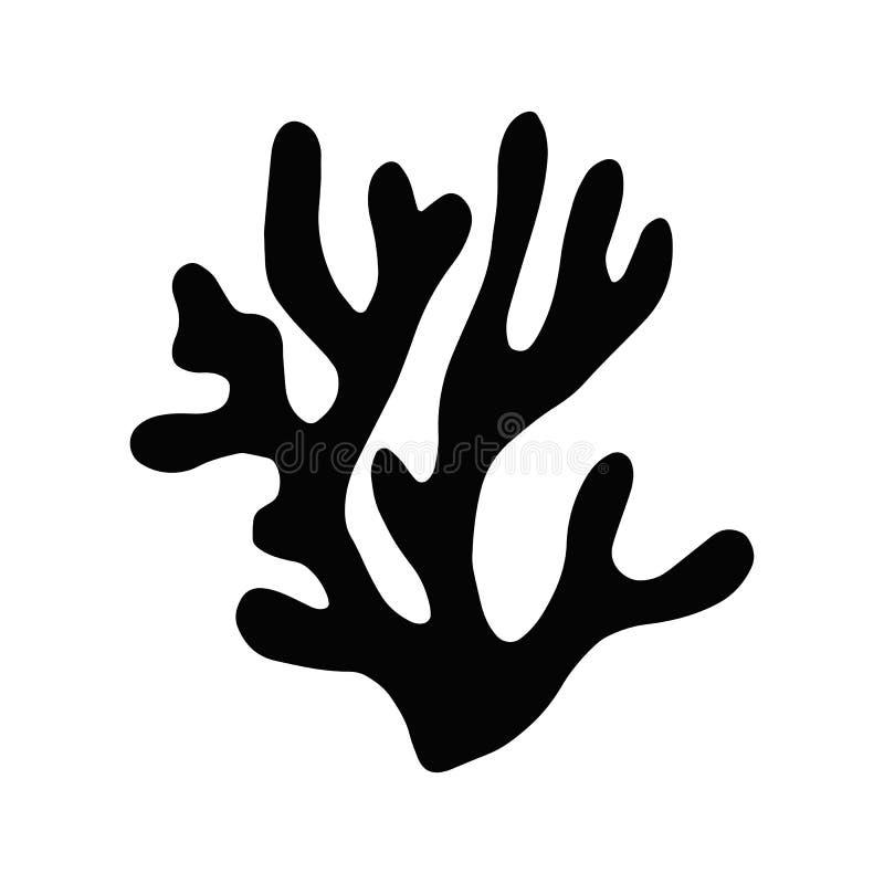 Gałęzatka kelp odizolowywający przedmiot Morska roślina ilustracji