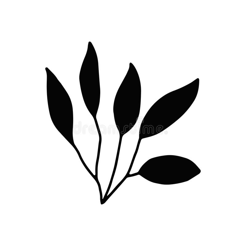 Gałęzatki kelp Odosobniona sylwetka Morska roślina ilustracji