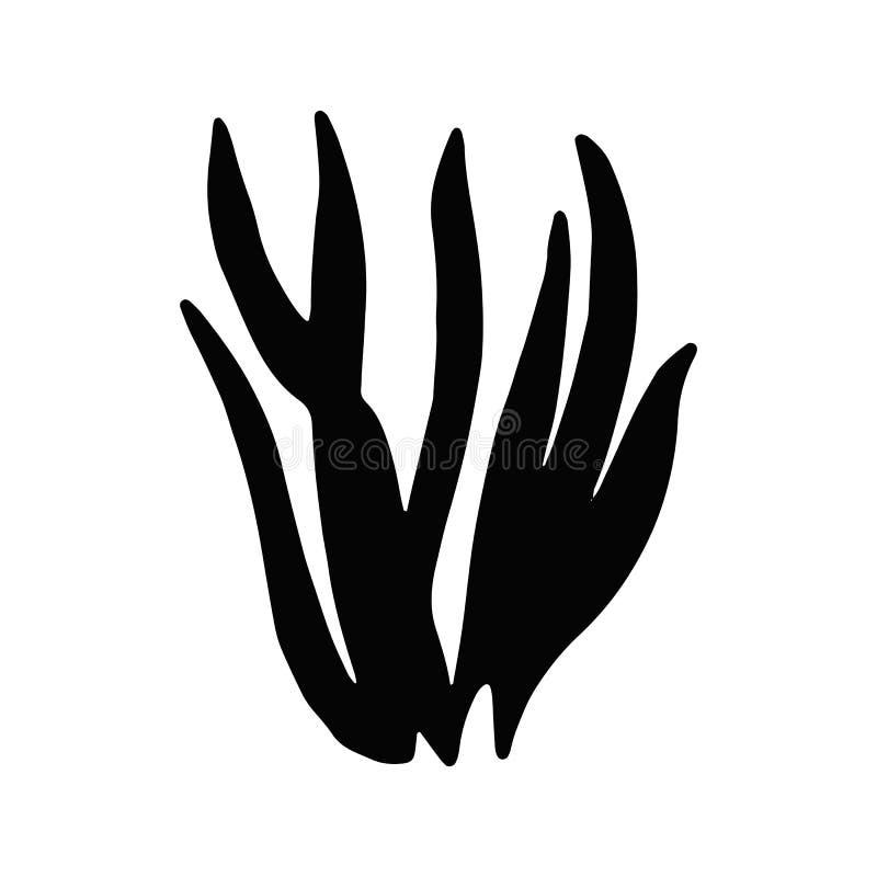 Gałęzatki kelp Odosobniony przedmiot morska rośliny sylwetka royalty ilustracja