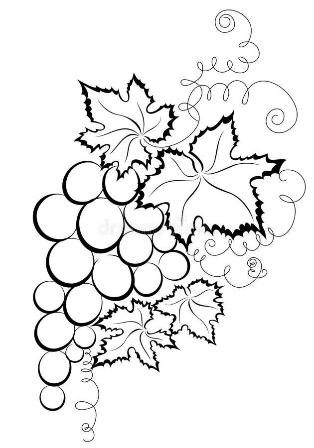 Gałęziaści winogrona royalty ilustracja