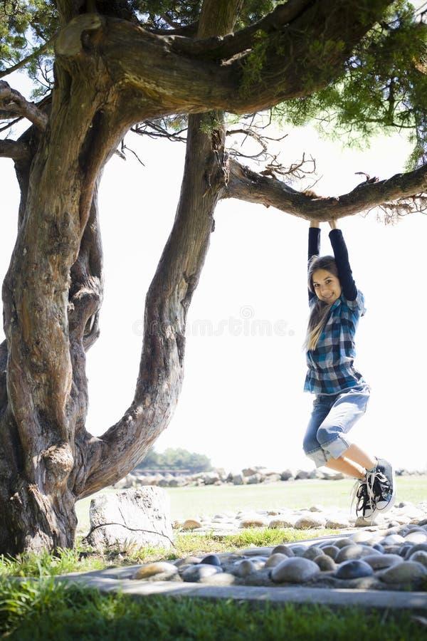gałęziastej dziewczyny kołyszący drzewny tween obrazy royalty free