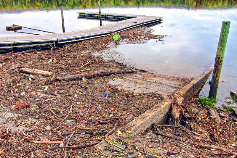 gałęziastej gruzów powodzi rzeczny grata drewno obrazy royalty free