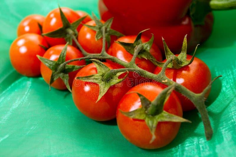 gałęziasty pomidor fotografia stock