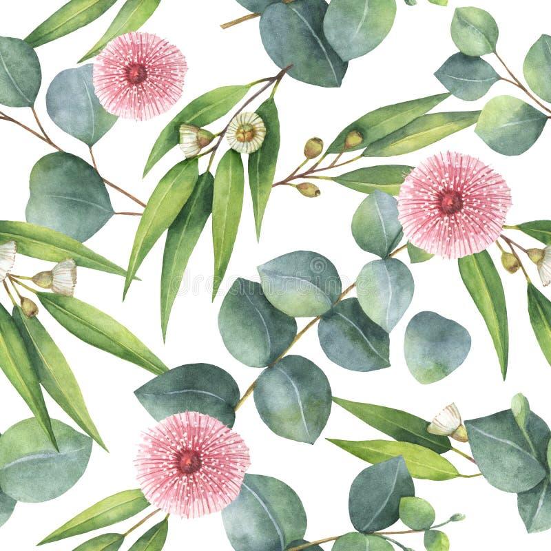 Gaat het waterverf naadloze patroon met eucalyptus weg en vertakt zich stock illustratie