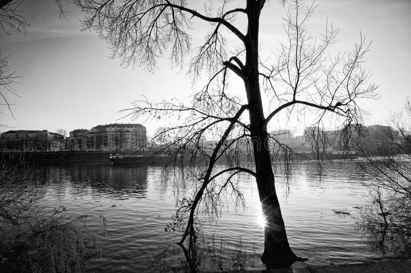 Gabarra y río Sena en el suburbio de París imagen de archivo
