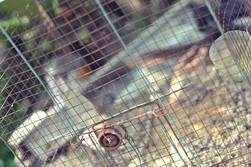 Gabbia per uccelli abbandonata immagine stock