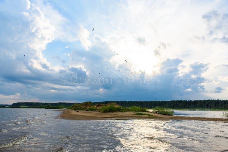 Gabbiani degli uccelli di volo in cielo blu sopra il fiume immagini stock libere da diritti