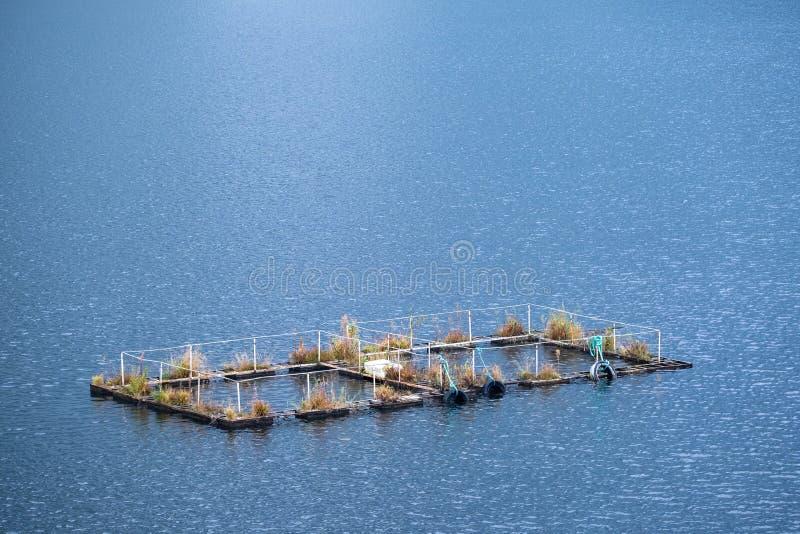 Gabbie di allevamento ittico fotografia stock libera da diritti