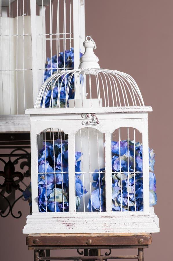 Gabbie per uccelli di legno bianche con le ortensie blu fotografie stock