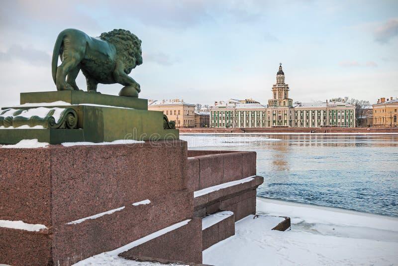 Gabinete de curiosidades en St Petersburg en el amanecer en invierno fotografía de archivo libre de regalías
