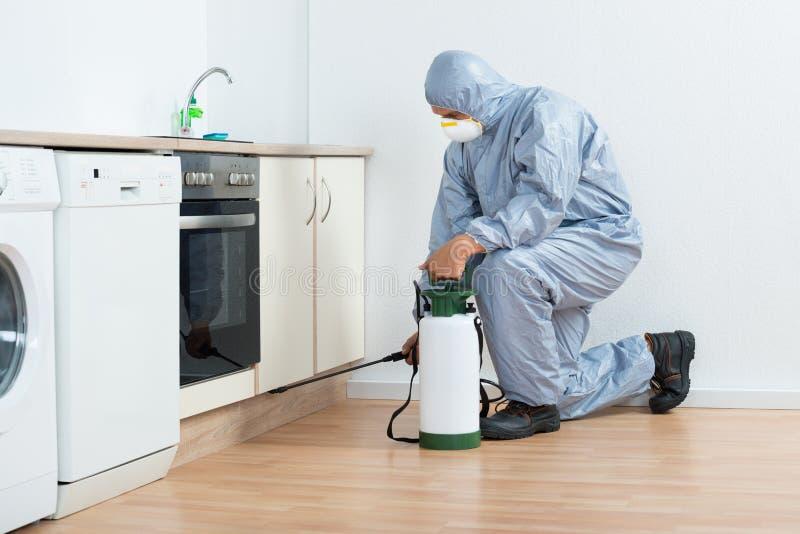 Gabinete de madera de Spraying Pesticide On del exterminador fotografía de archivo