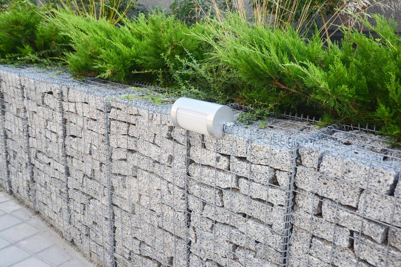 Gabion fence with stones in wire mesh and outdoor lighting. Gabion wire mesh fencing with natural stones. And savin juniper royalty free stock images