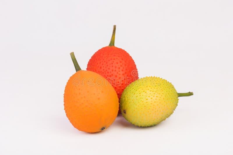 Gac, jackfruit do bebê, cabaça de Cochinchin, cabaça amarga espinhoso, cabaça doce fotografia de stock royalty free