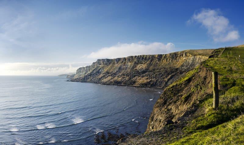 Gad faleza na Dorset Jurajskim wybrzeżu zdjęcie royalty free