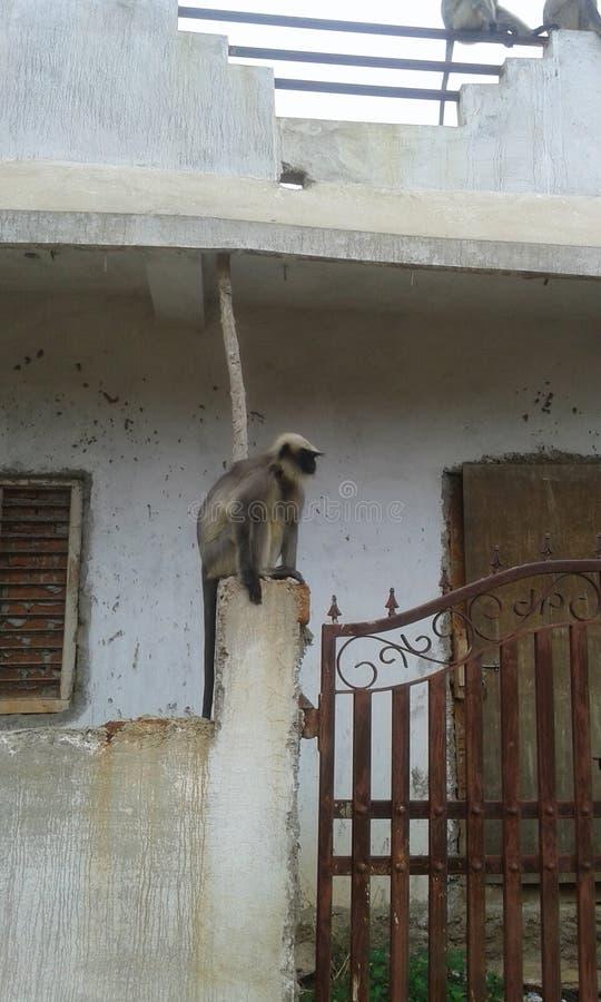 Gadag di Karanataka fotografie stock libere da diritti