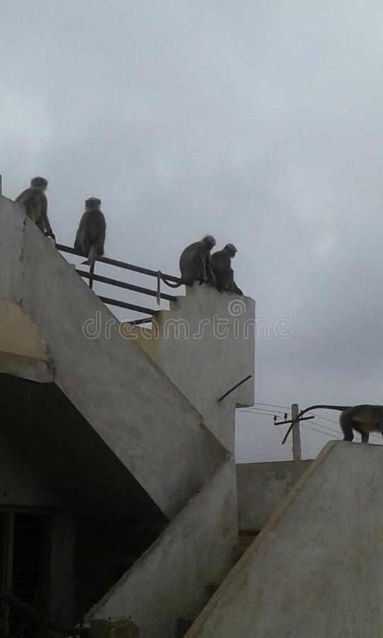 Gadag di Karanataka fotografia stock