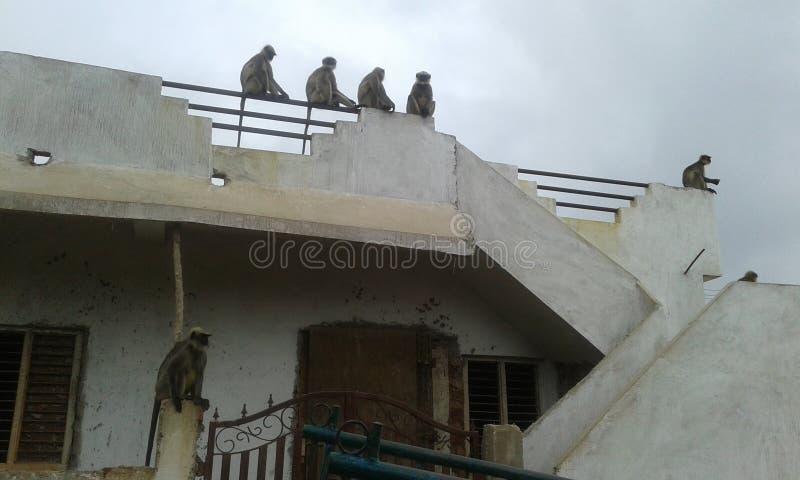Gadag di Karanataka fotografia stock libera da diritti