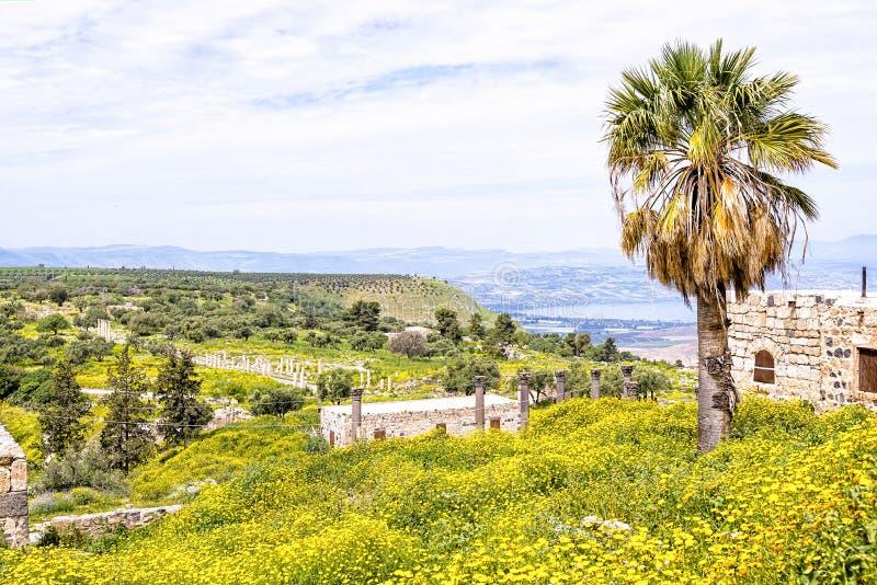 从Gadara的风景看法在约旦破坏小山顶 免版税图库摄影