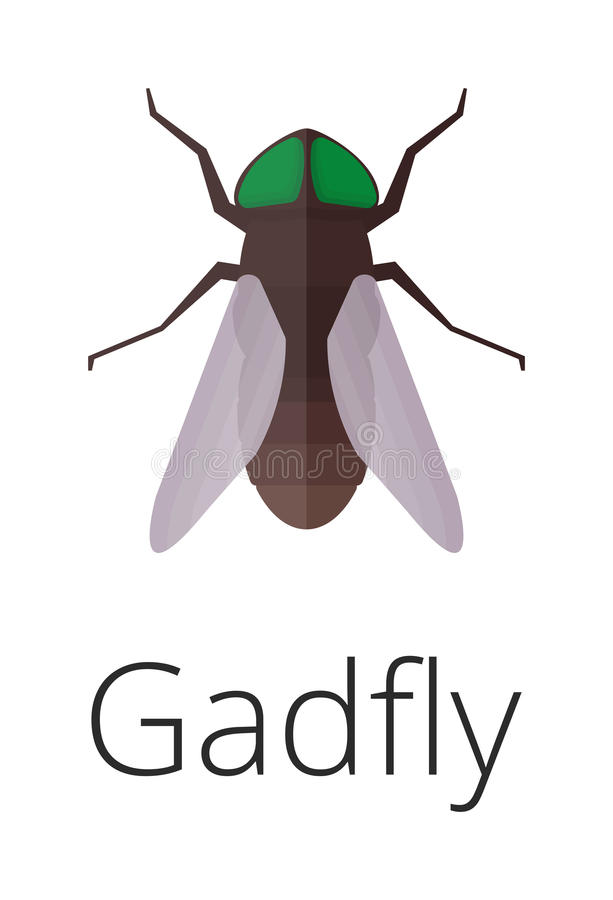 Gadgly skin parasite insect vector bug. stock illustration