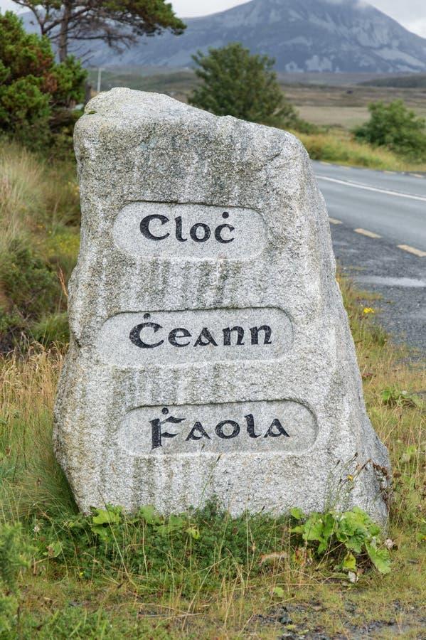 Gaelic Stone royaltyfri fotografi
