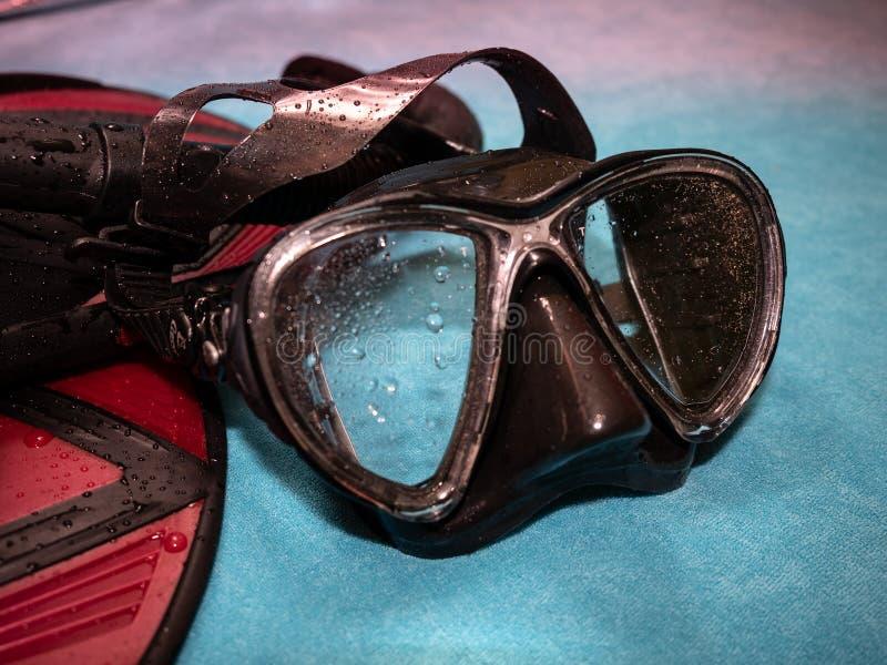 Gafas y aletas del salto El verano está viniendo fotografía de archivo