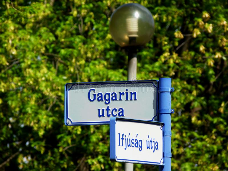 Gagarin gata royaltyfria bilder