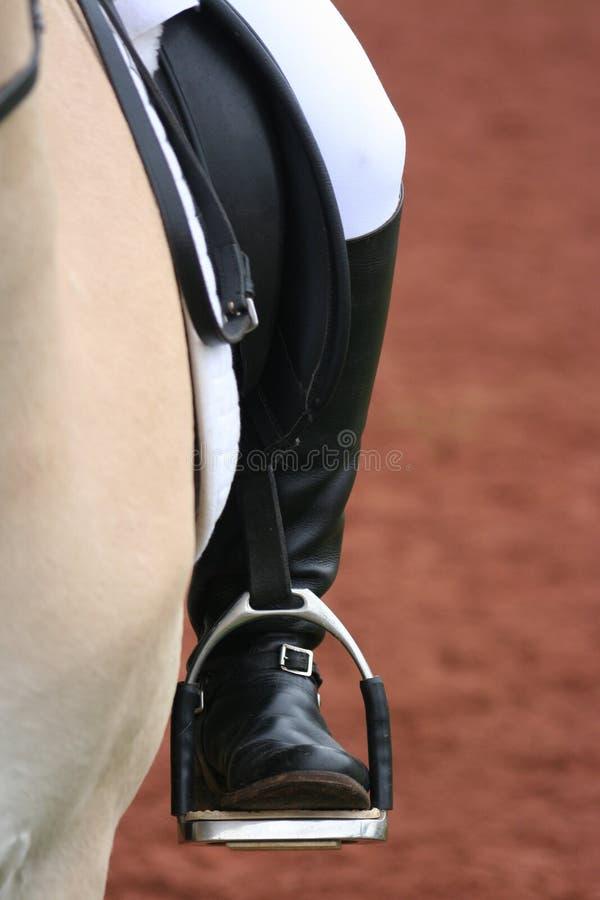 Gaine d'équitation photos libres de droits