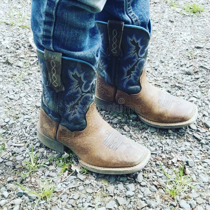 Gaines de cowboy photo libre de droits