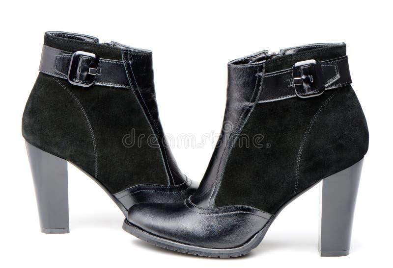 Gaines en cuir femelles photographie stock libre de droits