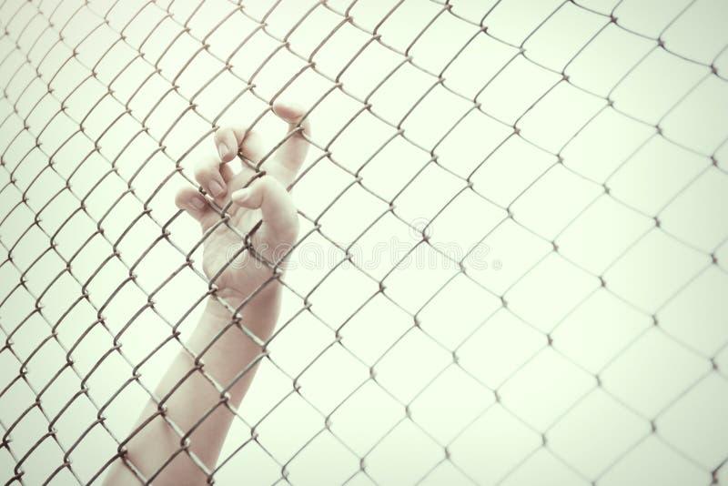 Gaiola de travamento da malha da mão O prisioneiro quer a liberdade foto de stock royalty free