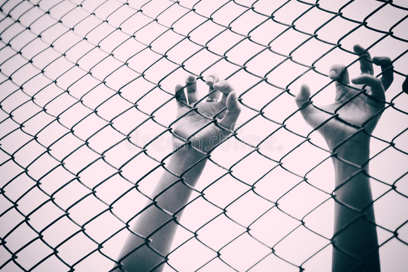 Gaiola de travamento da malha da mão O prisioneiro quer a liberdade imagem de stock royalty free