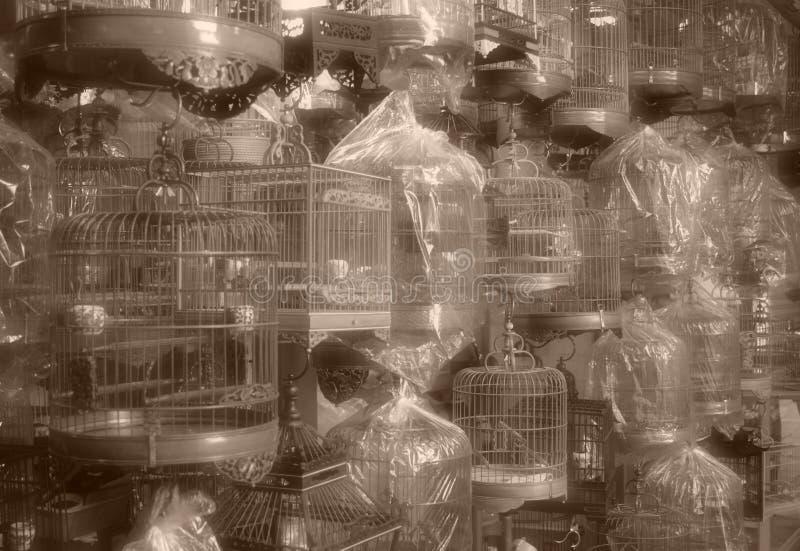 Gaiolas de pássaro chinesas - estilo do vintage imagem de stock royalty free