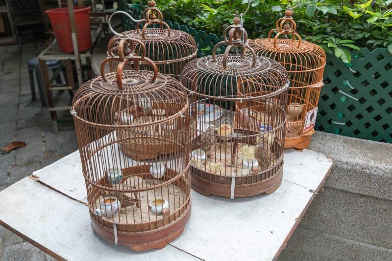 Gaiolas de pássaro do vintage fotos de stock