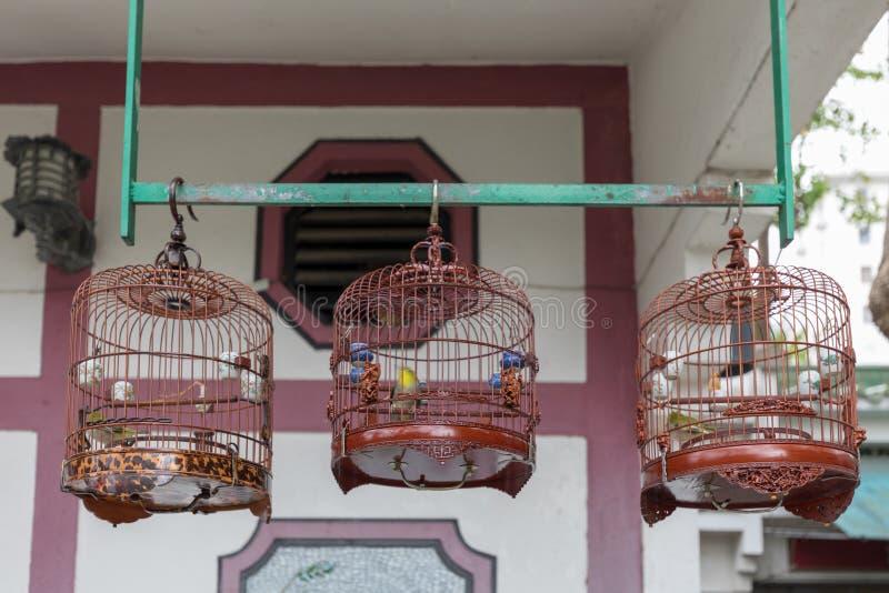 Gaiolas de pássaros da música imagens de stock