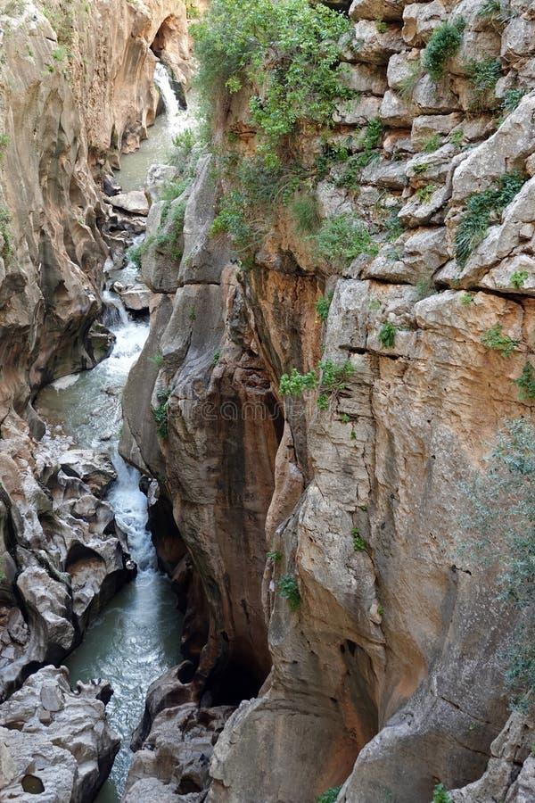 Gaitaneskloof in Caminito del Rey in Andalusia, Spanje stock afbeelding