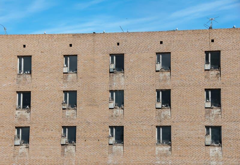 Gaivota de mar que aninham-se em peitoris da janela da construção abandonada na cidade fantasma Pyramiden do russo no arquipélago foto de stock royalty free
