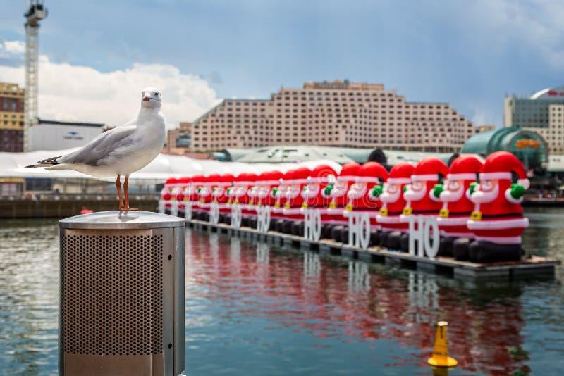A gaivota empoleirou-se na frente da fileira de Santa infláveis gigantescas no porto imagem de stock