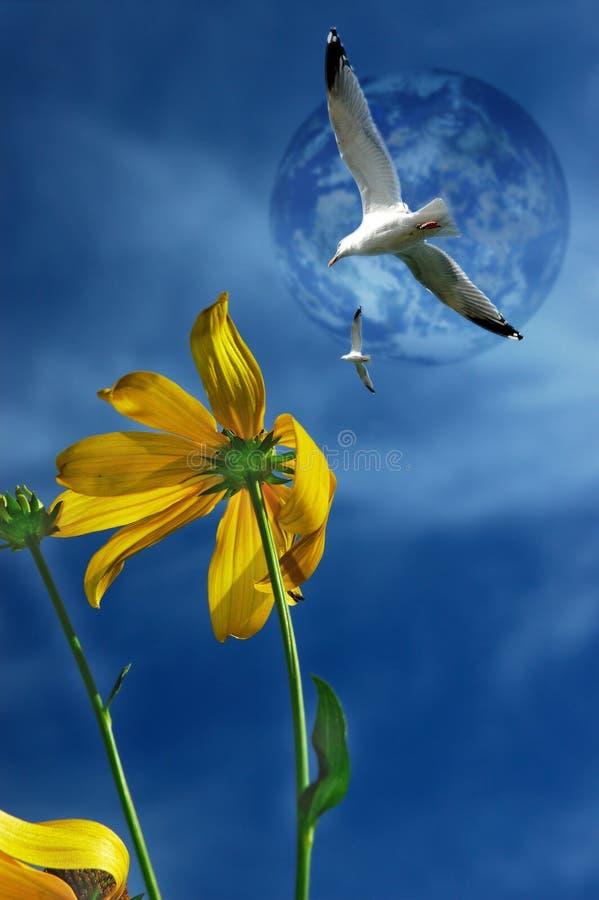Gaivotas que voam de encontro a um céu azul. ilustração do vetor