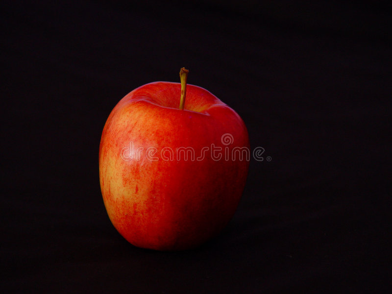 Galà Apple immagini stock libere da diritti