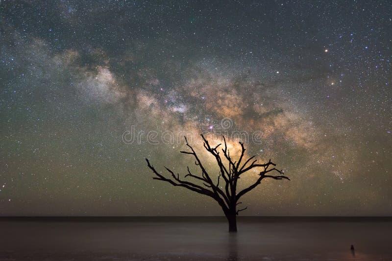 Galáxia da Via Látea da praia da baía da Botânica foto de stock royalty free