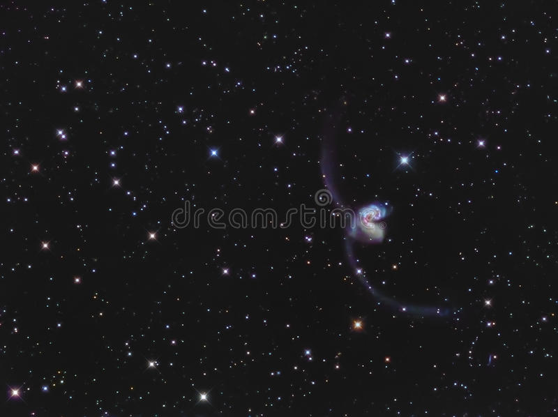 Galáxias das antenas de NGC 4038/4039 no Corvus imagens de stock