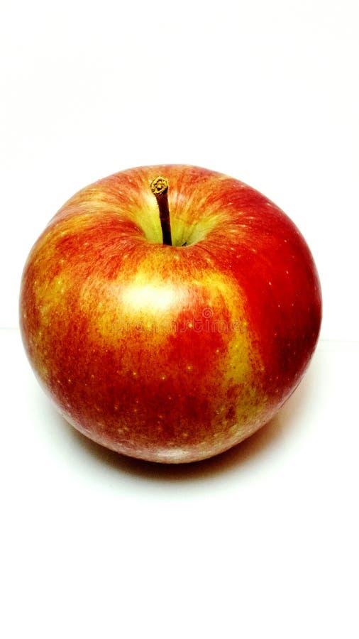 Gala apple studio shot royalty free stock photo