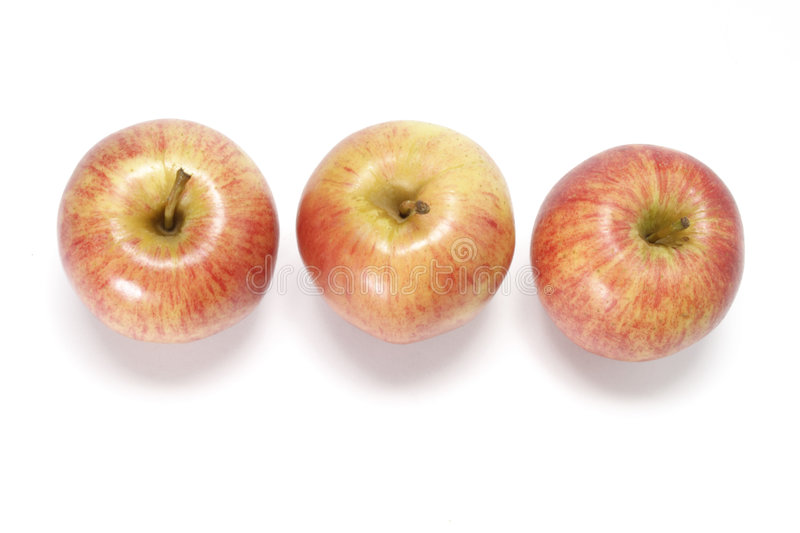 Gala apples stock photo