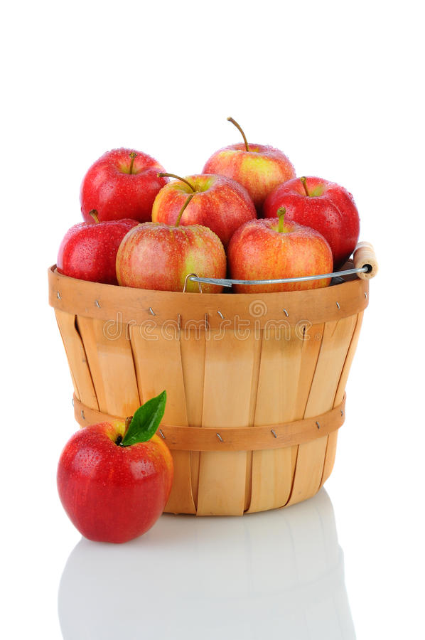 Download Gala Apples in a Basket stock photo. Image of basket - 26842972
